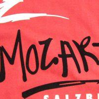 flockdruck-zweifarbig-mozart-salzburg-beflocken-bedrucken