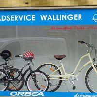 auslagen-schaufenster-fahrradservice-wallinger